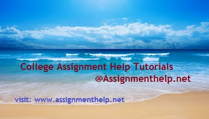 Homework Help for College, University and School Students