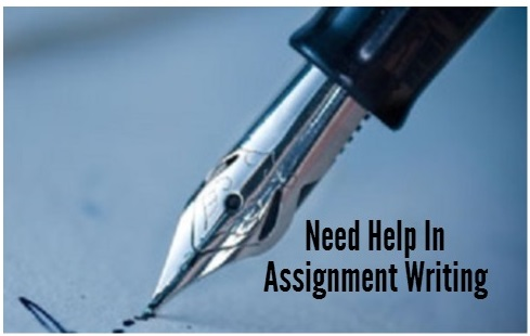 pay to write assignment statement