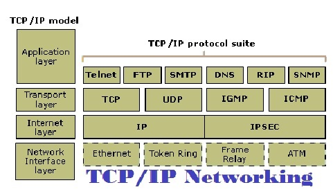 TCP/IP Networking Assignment