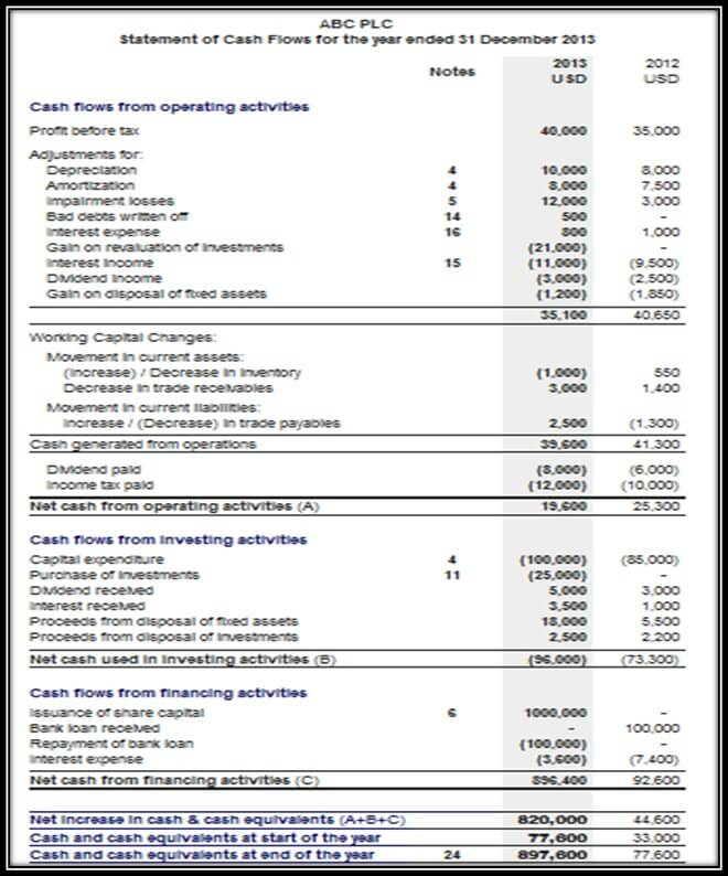 Examples of Cash Flow Statements
