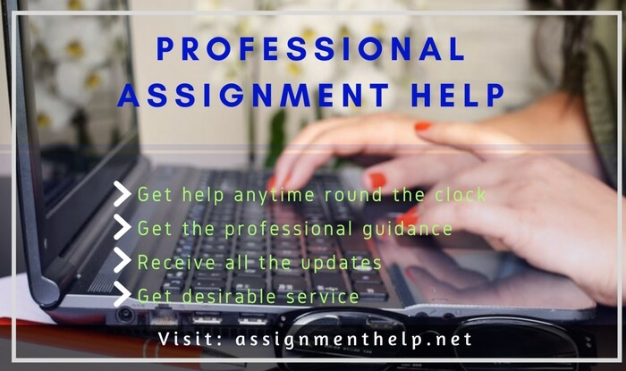 Professional Assignment Help