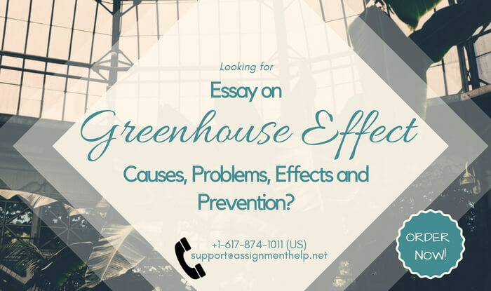 sample essay on greenhouse effect