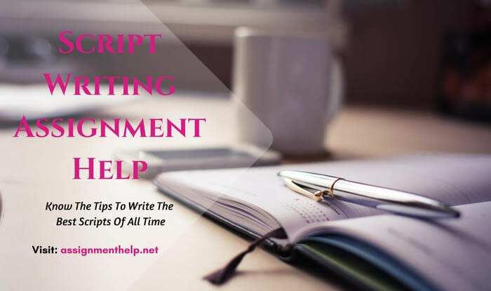 Script Writing Assignment Help