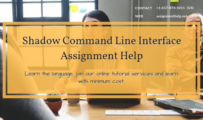Shadow Command Line Interface Assignment Help