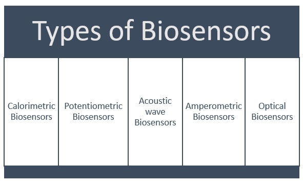 Types of Biosensors