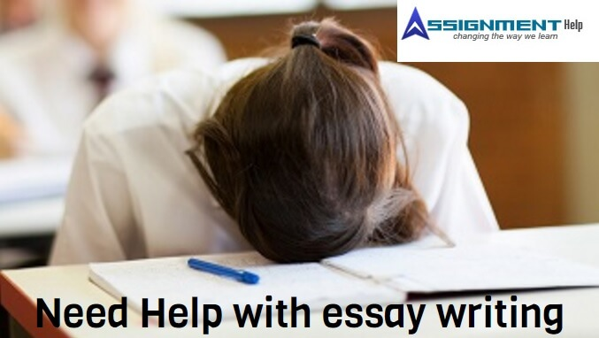 UCLA Essay Writing
