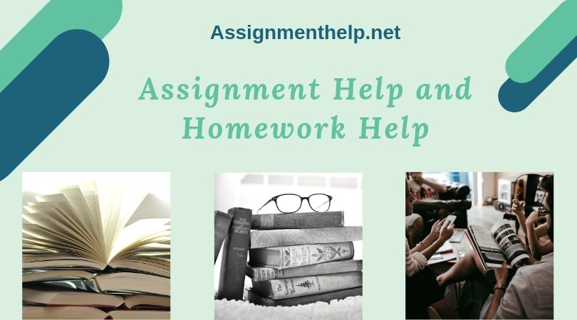 assignment help and homework help