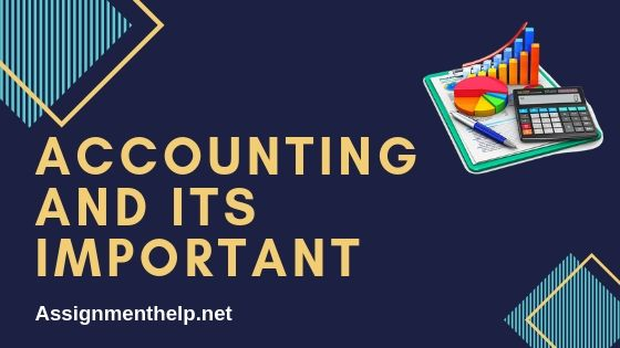 accounting and its important