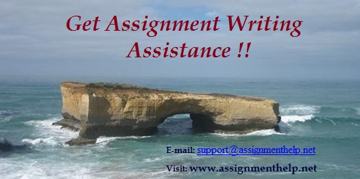 Writing Assignment Help