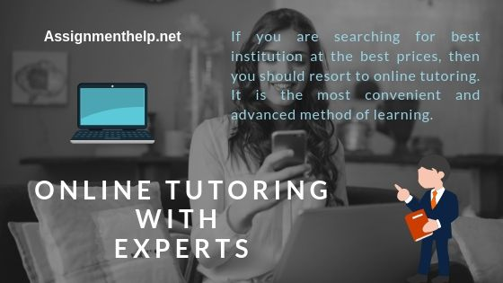 online tutoring with experts