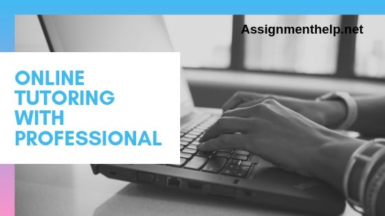 online tutoring with professional