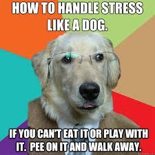 Enjoy a stress free life