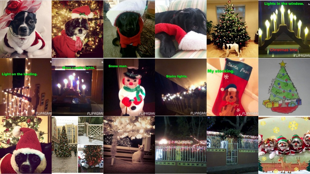Holiday Photo Contest Christmas photo contest result