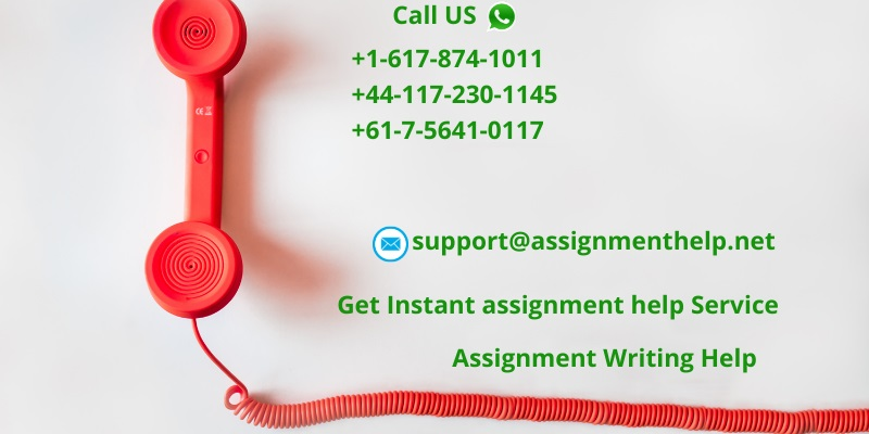 Get Instant assignment help Service