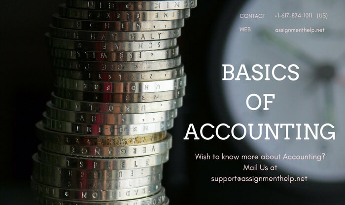 Accounting Basics Assignment Help