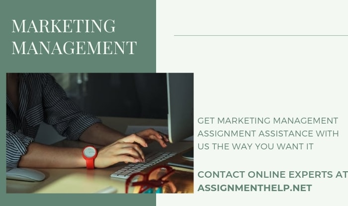 Assignment Help Marketing Management