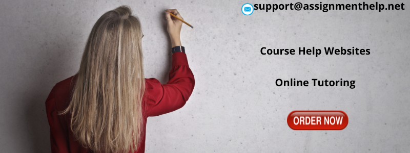 Assignment Help Websites