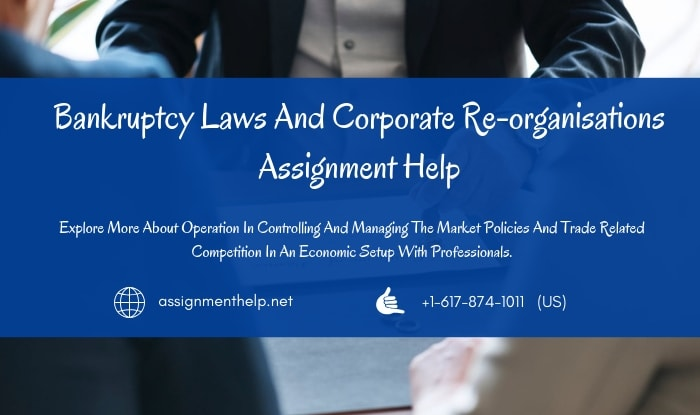 Bankruptcy Laws Assignment Help
