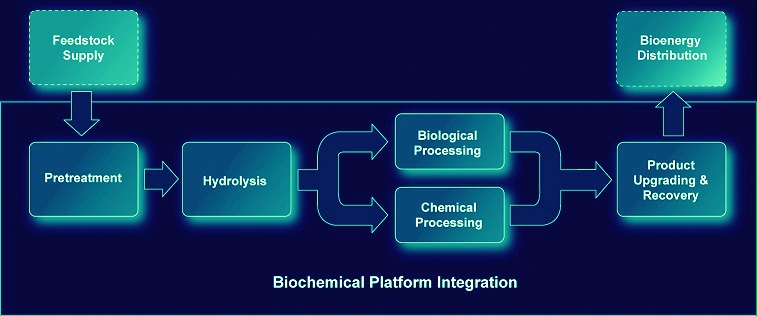 biotechnology assignment help with biochemical process