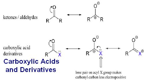 Carboxylic Acids and Derivatives Assignment Help