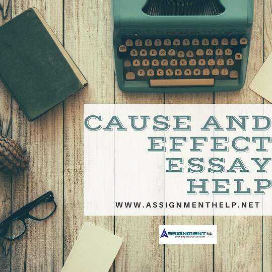 Cause and Effect Essay Help