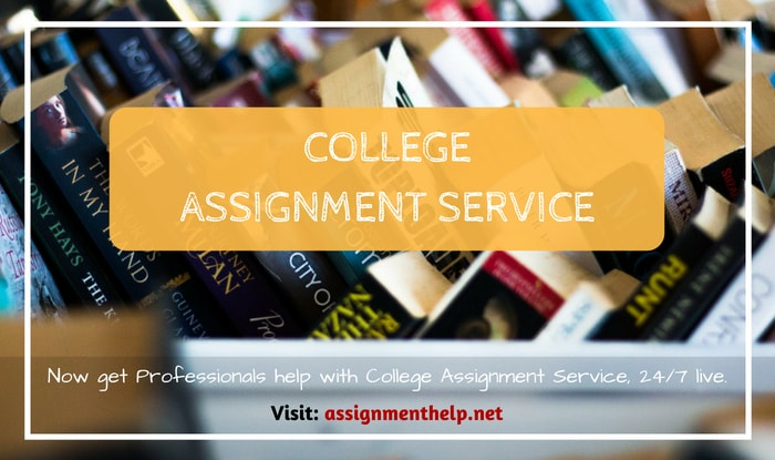 College Assignment Service