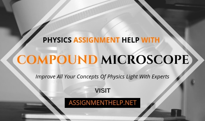 Compound Microscope Assignment Help