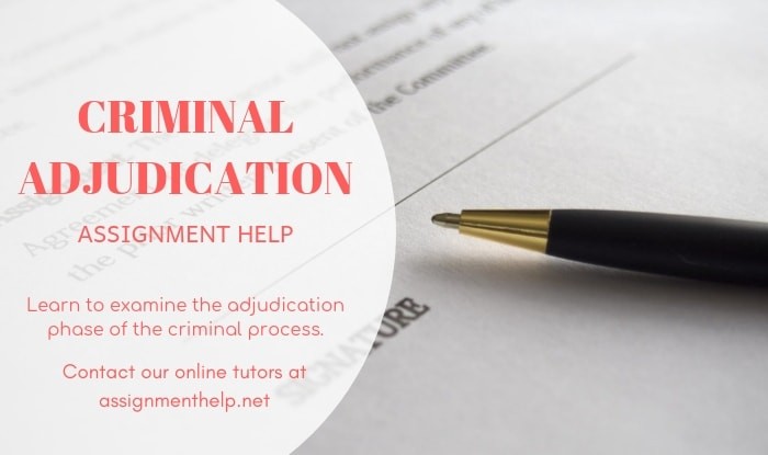 Criminal Adjudication Assignment Help
