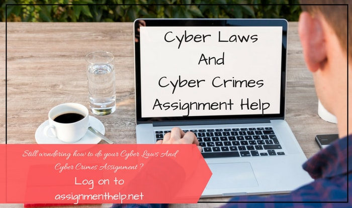Cyber Laws Assignment Help