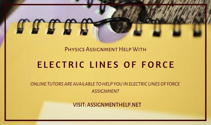 Electric Lines Of Force Assignment Help