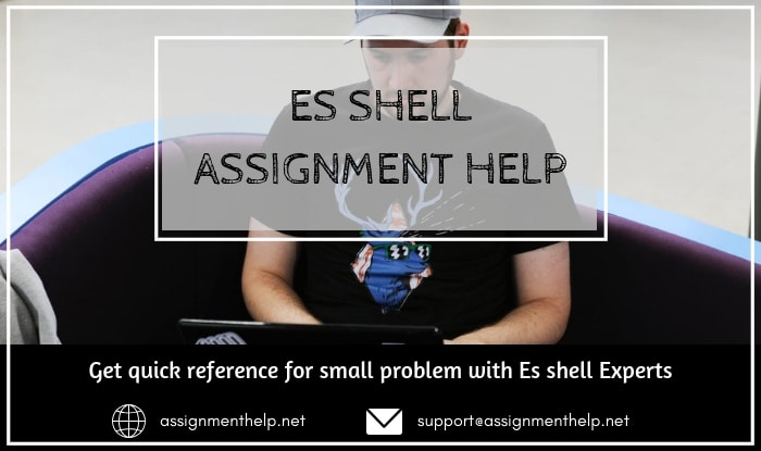Es shell Assignment Help