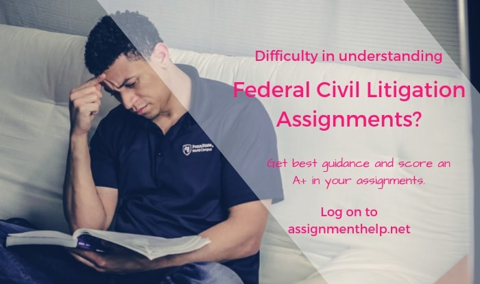 Federal Civil Litigation Assignment Help