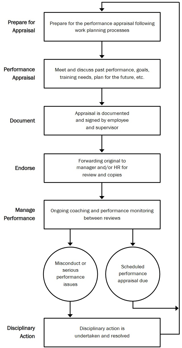 Flow chart of the performance review process