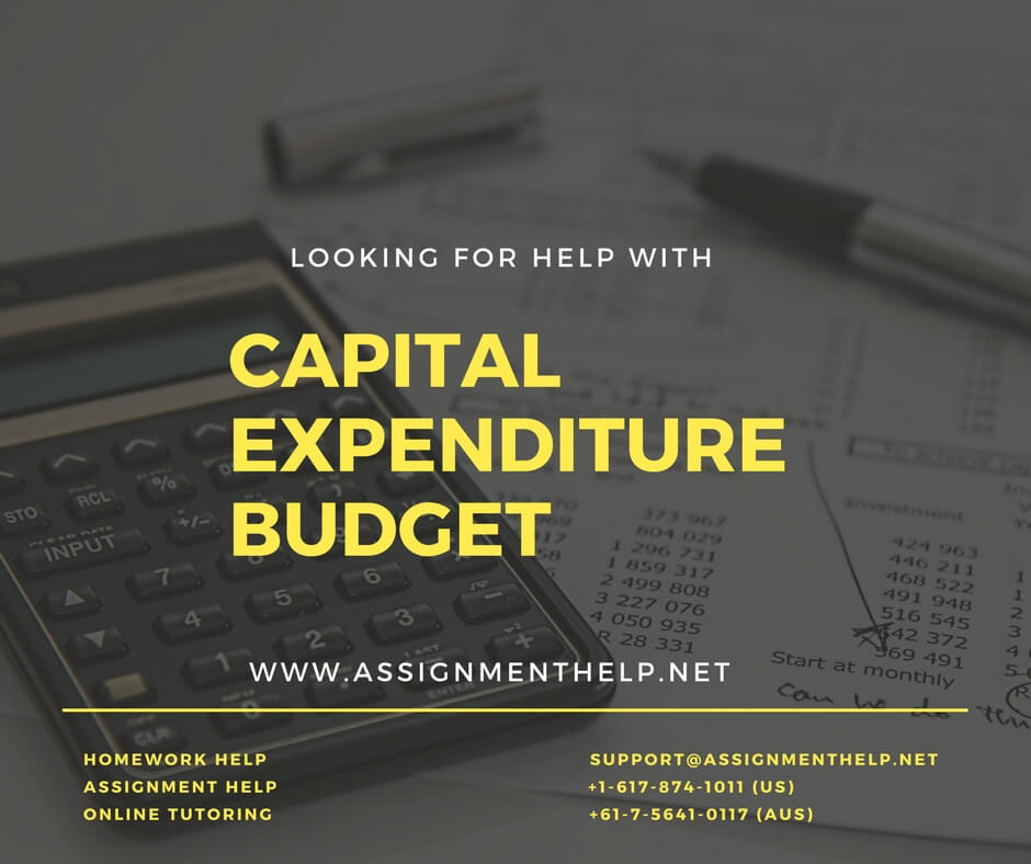 Help with Capital Expenditure Budget