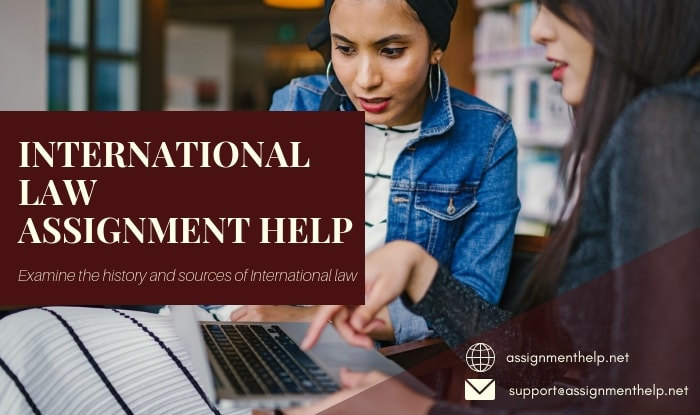 International Law Assignment Help