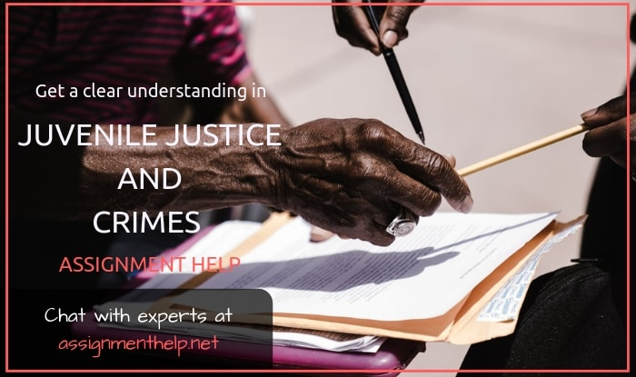 Juvenile Justice And Crimes Assignment Help