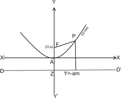 equation of directrix