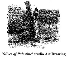 Olives of Palestine studio Art Drawing