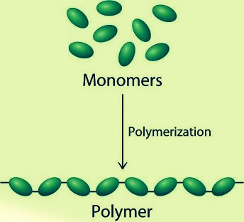 polymers help code
