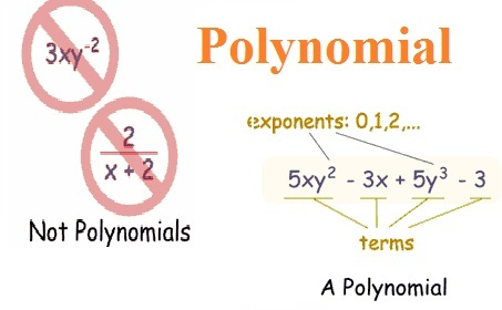 Polynomials Assignment Help