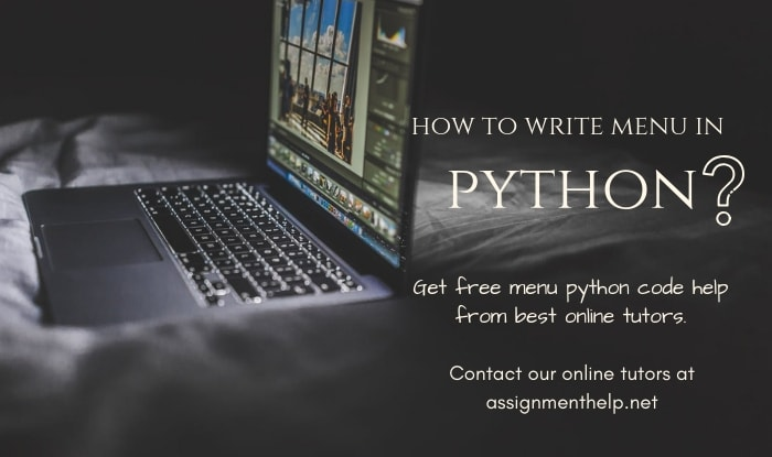 python menu assignment help