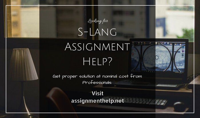 S-Lang Assignment Help