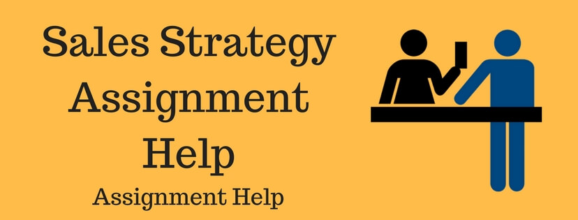 Sales Strategy Assignment Help
