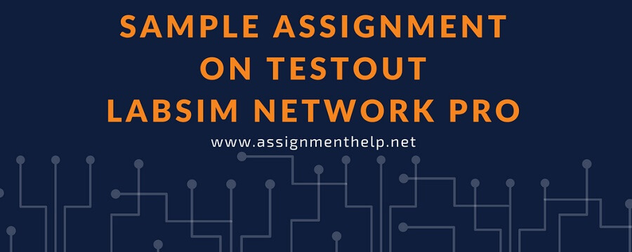Sample Assignment on Testout Labsim Network Pro
