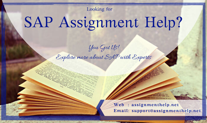 SAP Assignment help