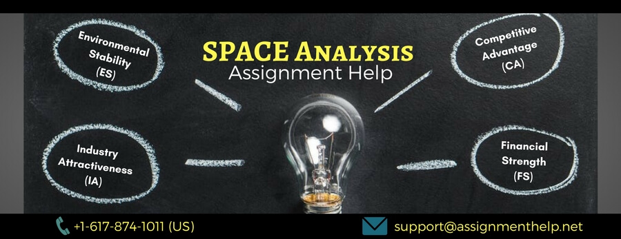 SPACE Analysis Assignment Help