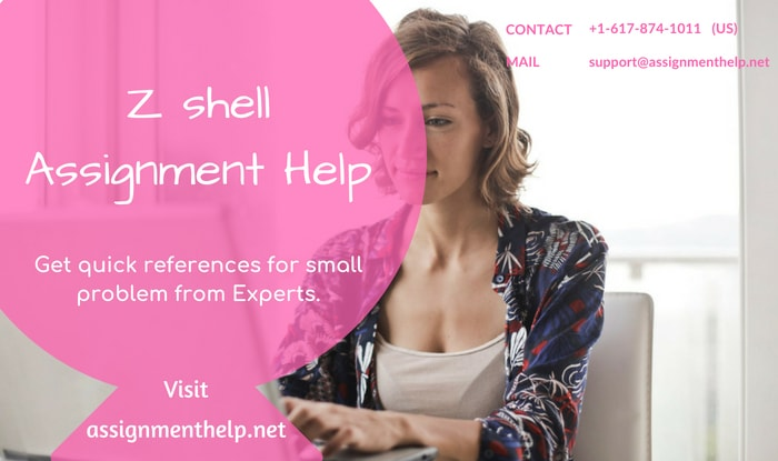 Z shell Assignment Help